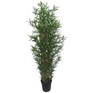 Bamboo Tree w/ Pot 180cmH