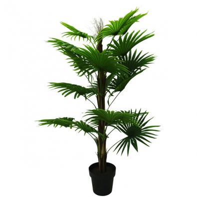 Fan Palm with Pot 120cmH