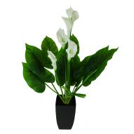 Calla Lily Decor with Pot 66cmH