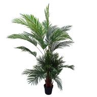Areca Palm w/ Pot 180cmH