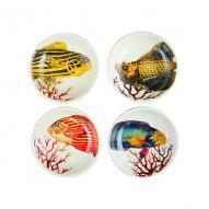 Marine Life Plate Set of 4, 10.5cmDia