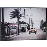 Palm Road Wall Art