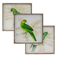 Perroquet Wall Art Assorted