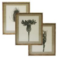 Meadows Wall Art Assorted