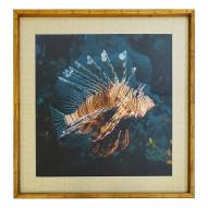 Lion Fish Wall Art