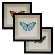 Butterflies Wall Art Assorted