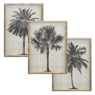 Bramston Palms Wall Art Assorted
