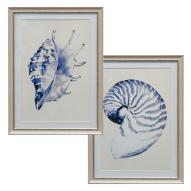 Beach Shells Wall Art Assorted